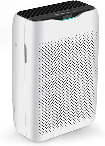 COOCHEER Air Purifier with True HEPA Filter and Activated Carbon, Large Room Smart Air Cleaner Deodorizer for Removing Odors, Dust, Smoke and More - Suitable in Home, Rooms, Office