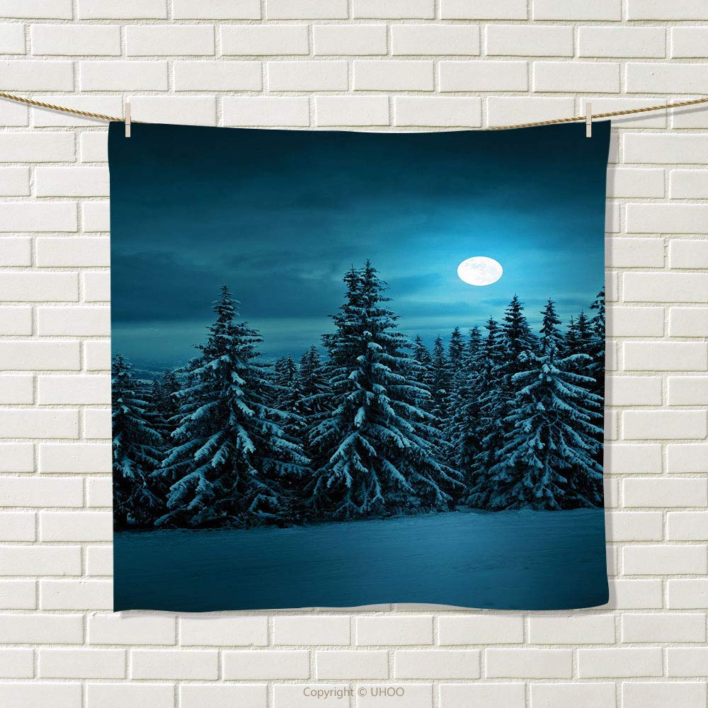 smallbeefly Night Hand Towel Tranquil Blue Night with Moon in Woods Covered with Snow Serene Winter View Quick-Dry Towels Turquoise Teal White Size: W 20'' x L 27''
