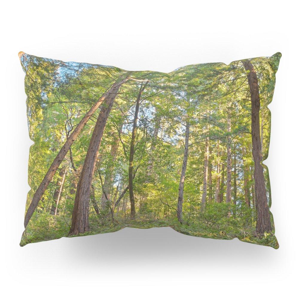Society6 Muir Woods Pillow Sham Standard (20'' x 26'') Set of 2