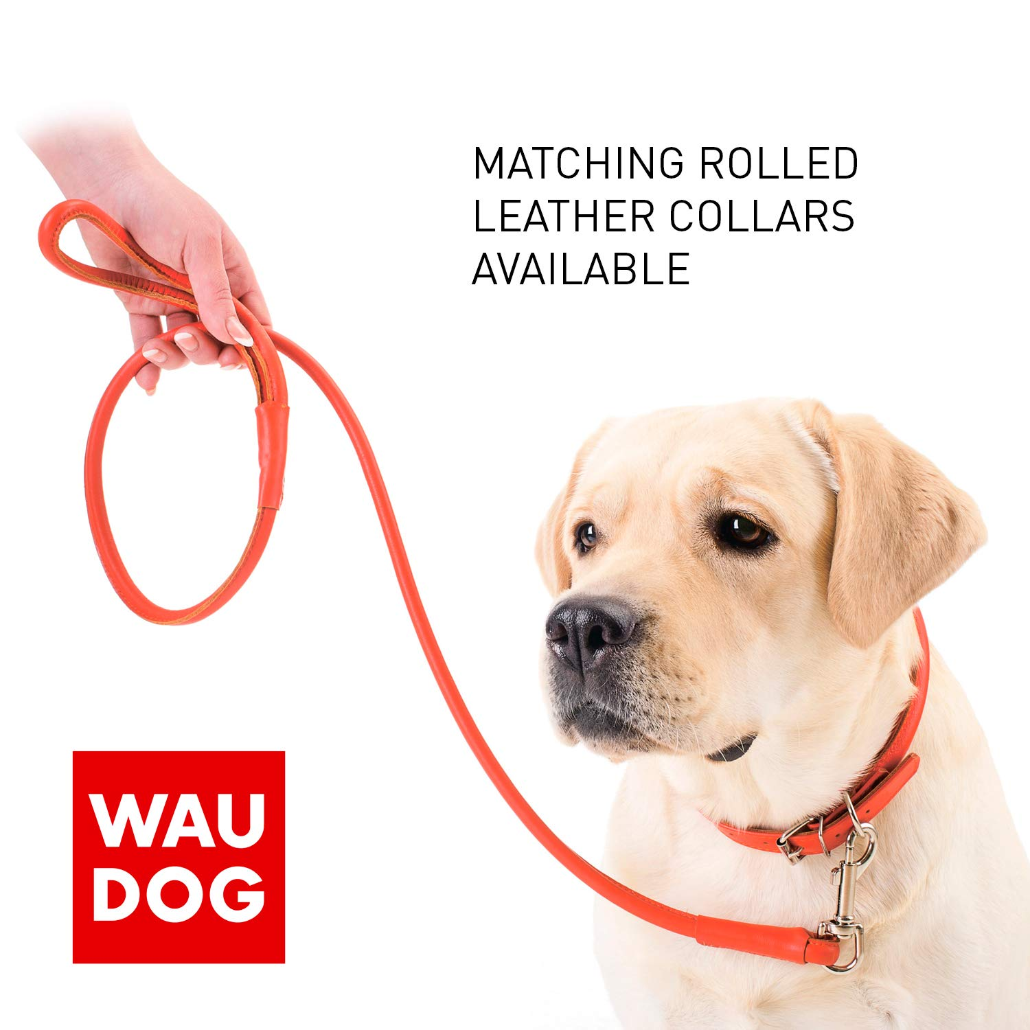 Rolled Leather Dog Leash 4 ft - Soft Dog Lead for Small Medium Large Dogs Puppy - Red Blue Pink Purple Green Black Pet Leashes for Outdoor Walking Running Training Plus (Mint Green, 4 Ft x 3/8'' Wide) by WAUDOG (Image #4)