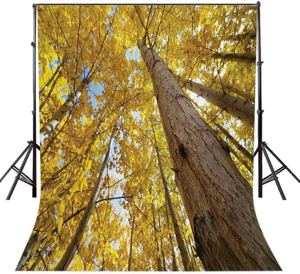 10x15 FT Backdrop Photographers,Up View of Fall Aspen Tree Leaves in Faded Tone Autumn Season Photography Background for Kid Baby Boy Girl Artistic Portrait Photo Shoot Studio Props Video Drape