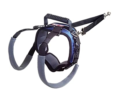 Solvit CareLift Rear-only Dog Lifting Harness: Amazon.co.uk ...