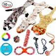 Lobeve Dog Toys Gift Set,Variety Puppy Chew Teething Toys bundle for Medium to Small Doggie
