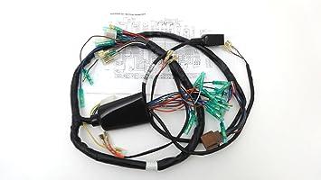Amazon.com: MAIN WIRING HARNESS FOR 1977 KAWASAKI KZ1000 A1 ... on suzuki wiring harness, xs650 wiring harness, cb750k wiring harness, yamaha wiring harness, h2 wiring harness, h1 wiring harness, kz550 wiring harness, kz650 wiring harness, cb750 wiring harness, kz440 wiring harness,