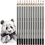 Dainayw Drawing Pencils Set, 24 Piece, Sketching Pencils 9H to 14B for Beginners Artist - 2H Pencil