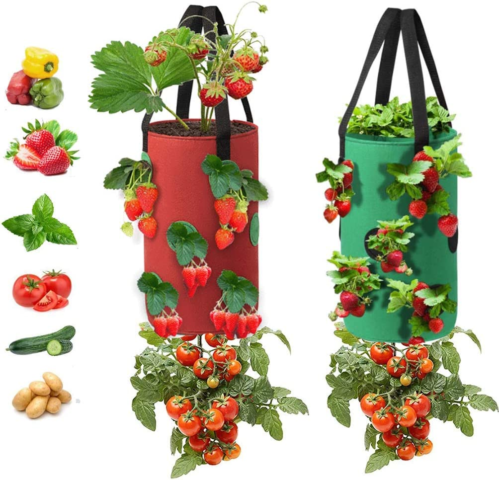 2Pack Strawberry Grow Bags,3 Gallons Non-woven Strawberry Planting Grow Bags with Handles,12 Planting Holes Growing Bags,Hanging Tomato Strawberry Planter Tomato Garden Vegetable Planting(Red + Green)