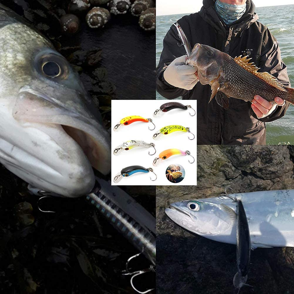 Lucio 6 Piezas Trucha Cebo Bi/ónico para la Pesca de Agua Salada Perca SUNSK Se/ñuelo de Pesca Mar Anzuelos de Pesca con Cebo Duro de Pl/ástico Cebo de Pesca para Lucio