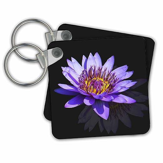 Amazon sven herkenrath nature blue asia lotus flower buddha sven herkenrath nature blue asia lotus flower buddha symbol macro design key chains mightylinksfo