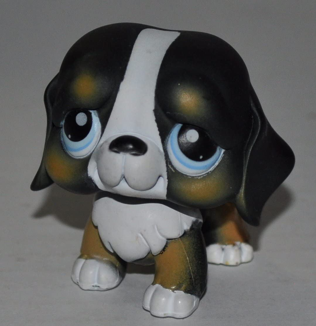 Bernese Mountain Dog 145 Blue Eyes Littlest Pet Shop Retired Collector Toy Lps Collectible Replacement Single Figure Loose Oop Out Of