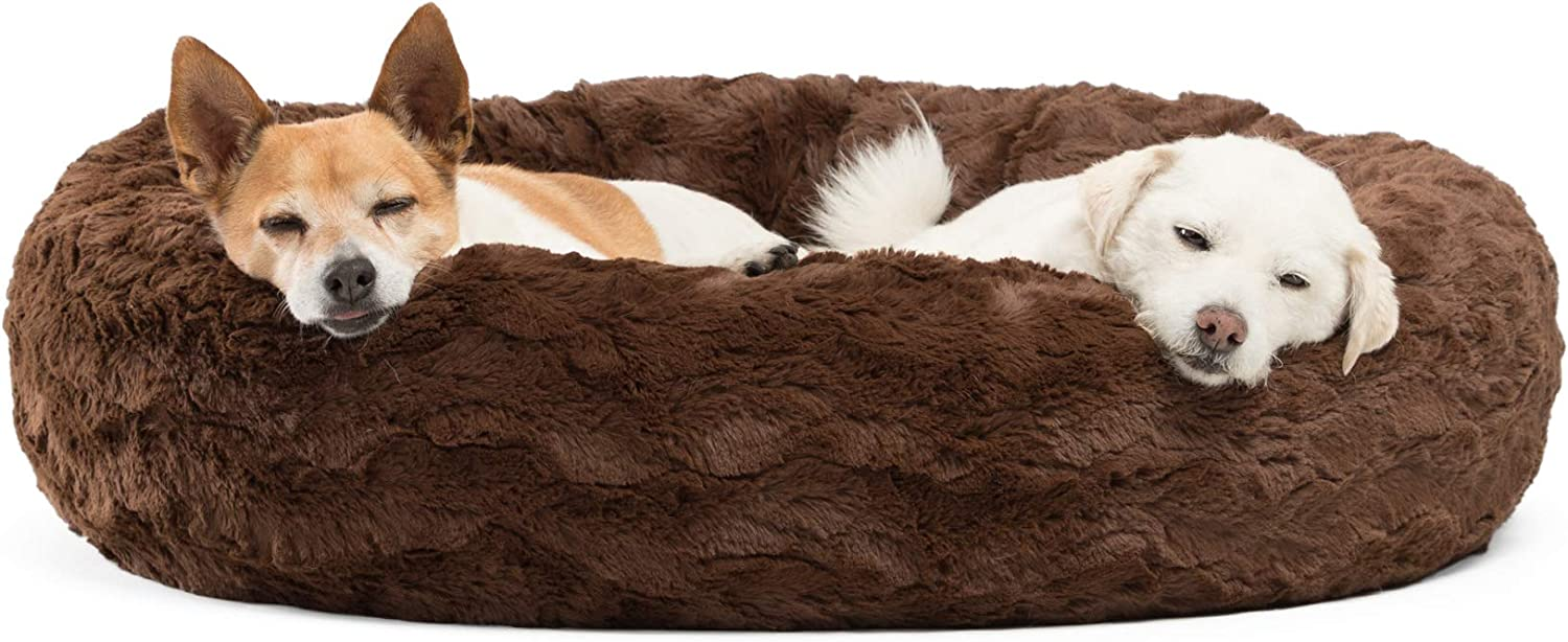 7 Best dog security Bed 5