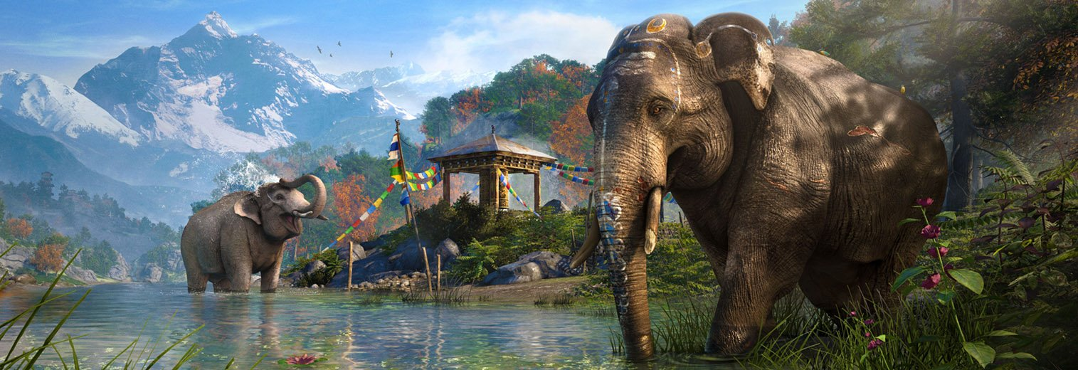 Amazon far cry 4 playstation 4 video games gumiabroncs Choice Image