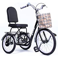 Riscko Triciclo Adulto con Dos cestas Tres Ruedas Modelo Park