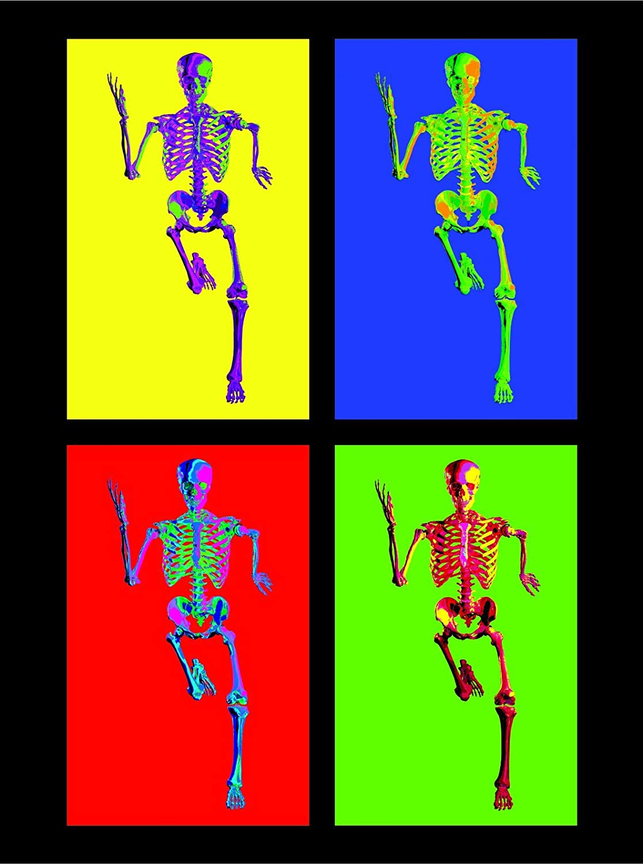 3B Scientific MAPA10Suu Medart Fondo Negro 3B Scientific GmbH poster del esqueleto; poster del esqueleto; esqueleto; póster esqueleto