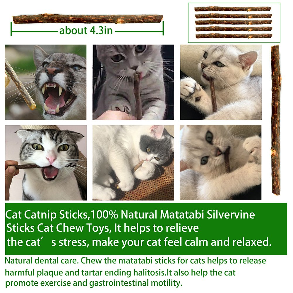Cat Toys Variety Pack for Kitten, 23Pcs, Cat Teaser Wand,Interactive Feather Toy,Catnip Fish,Catnip Matatabi Chew Sticks,Cat Toys Interactive LED Light,Fluffy Mouse,Crinkle Balls Bells,Scratching Toys