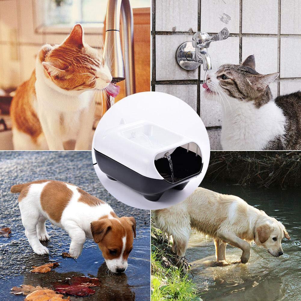 Cat Water Fountain Automatic Circulation Smart Pet Adjustable Flow Dispenser Usb Charging Ultra Quiet Pump For Dog Bird Feeder Drinking 2.5l Super Oxygen Filter Drink Feeders Feeding Bowl Drinker