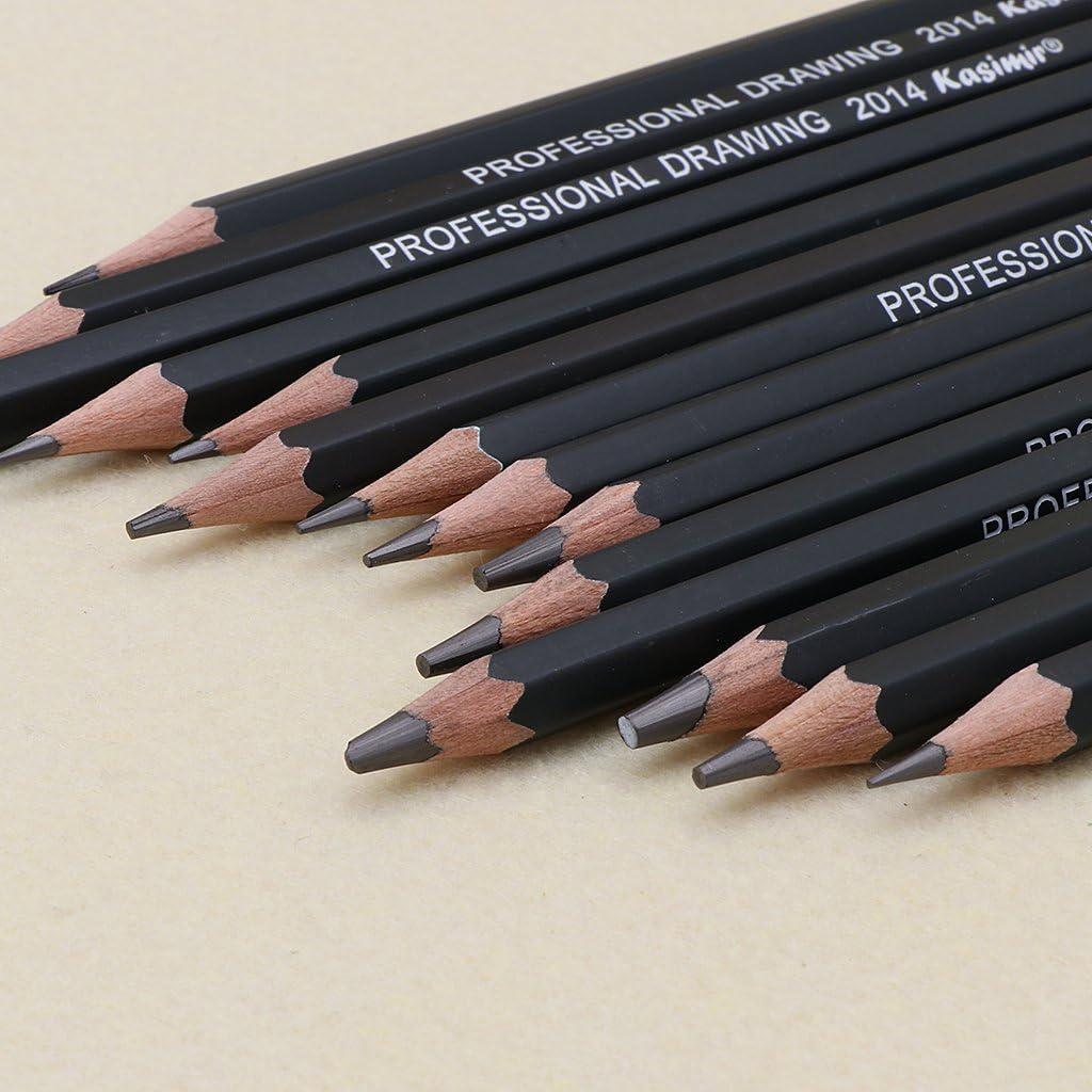 studenti disegno artistico per schizzi WuLi77 14 matite -12B 10B 8B 7B 6B 4B 3B 2B 1B HB 2H 4H 6H