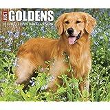 Just Goldens 2020 Box Calendar (Dog Breed Calendar)