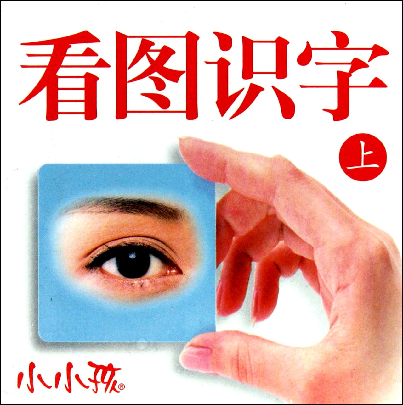 Read Online Picture Flashcards - Little Kids - 1st volume (Chinese Edition) pdf epub