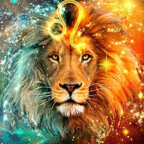 Amazon Com 5d Diamond Painting Kits For Adults Full Drill Diy Lion Diamond Art By Numbers Crystal Rhinestone Embroidery Cross Stitch Arts Crafts For Home Wall Decor 12x16inch