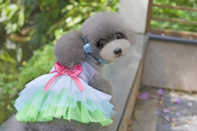 Costume da compagnia per feste Articoli per animali domestici Varie Vestiti per cani, vestiti di cotone per animali domestici, garze per labbra, Gonna di peluche (colore  rosa, Taglia  M) Pet Uniform