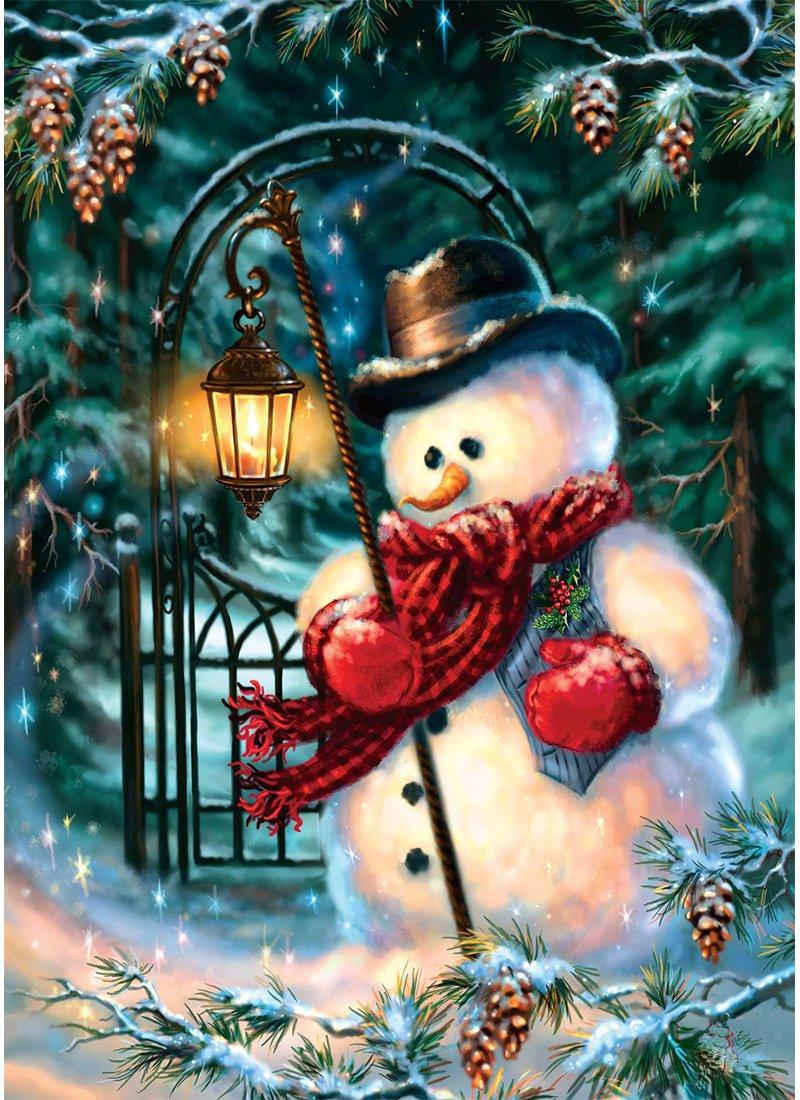 5D Pintura por Diamantes (5699) muñeco de nieve