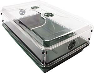 """EarlyGrow 93774 24"""" x 15"""" x 9.5"""" Domed Propagator with Height Extender, 1, Green"""