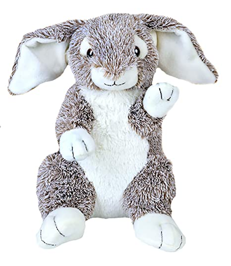 d7453a5fd39 Amazon.com  Personal Recordable Plush 15