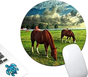 Round Gaming Mouse Pad Custom,AIRWEE Non-Slip Rubber Mouse Pads Mat for Office Computers Laptop with Blue Turtle Sticker,Horse in Grass