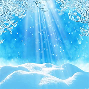 amazon com laeacco vinyl 5x5ft photography background blue christmas background heavy snowfield winter season outdoor scenery ice snow branches sunlight background portraits shooting video studio props camera photo laeacco vinyl 5x5ft photography background blue christmas background heavy snowfield winter season outdoor scenery ice snow branches sunlight