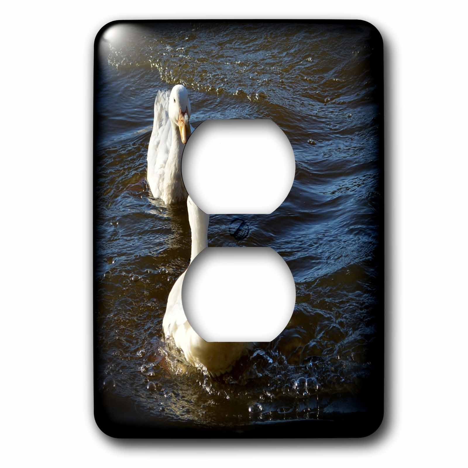 3dRose WhiteOaks Photography and Artwork - Ducks - Mirror Mirror is a photo of two ducks looking at each other - Light Switch Covers - 2 plug outlet cover (lsp_265328_6)