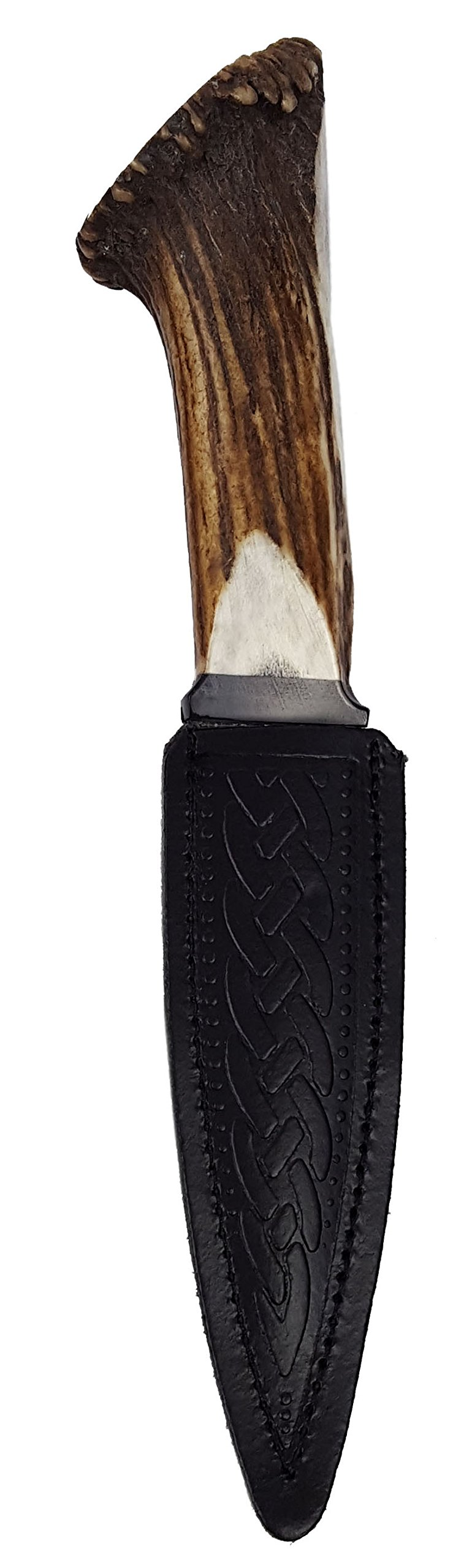 Genuine Full Crown Stag Horn Sgian Dubh with Stainless Steel Blade