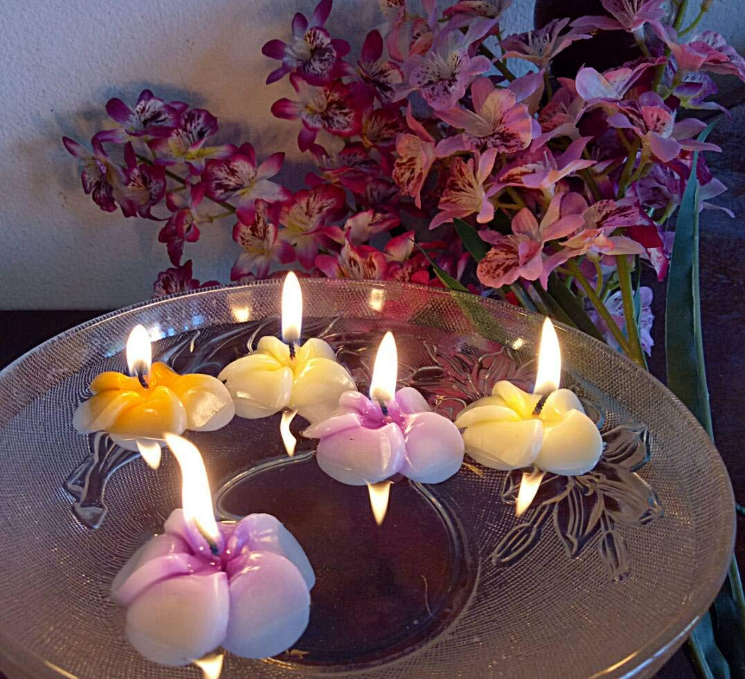 NAVA CHIANGMAI Plumeria Flower Floating Candles 10 pieces / 1 Set by NAVA CHIANGMAI (Image #2)
