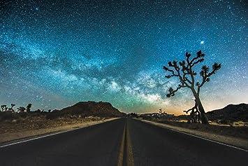 Jt Road Joshua Tree National Park Starry Sky Photo Art Print Laminated Dry Erase Sign Poster 18x12