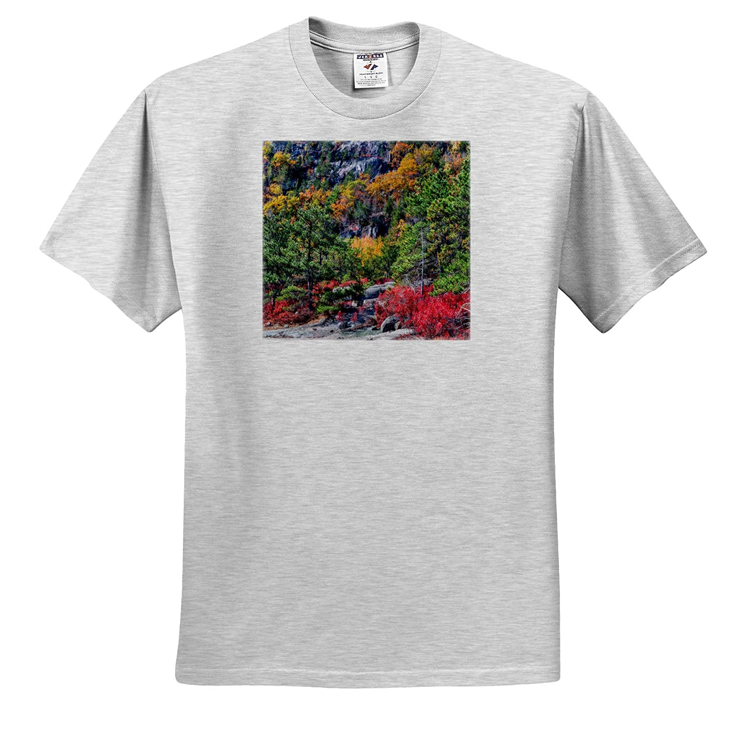 Landscapes Autumn Leaves on Hillside ts/_317144 Adult T-Shirt XL 3dRose Mike Swindle Photography