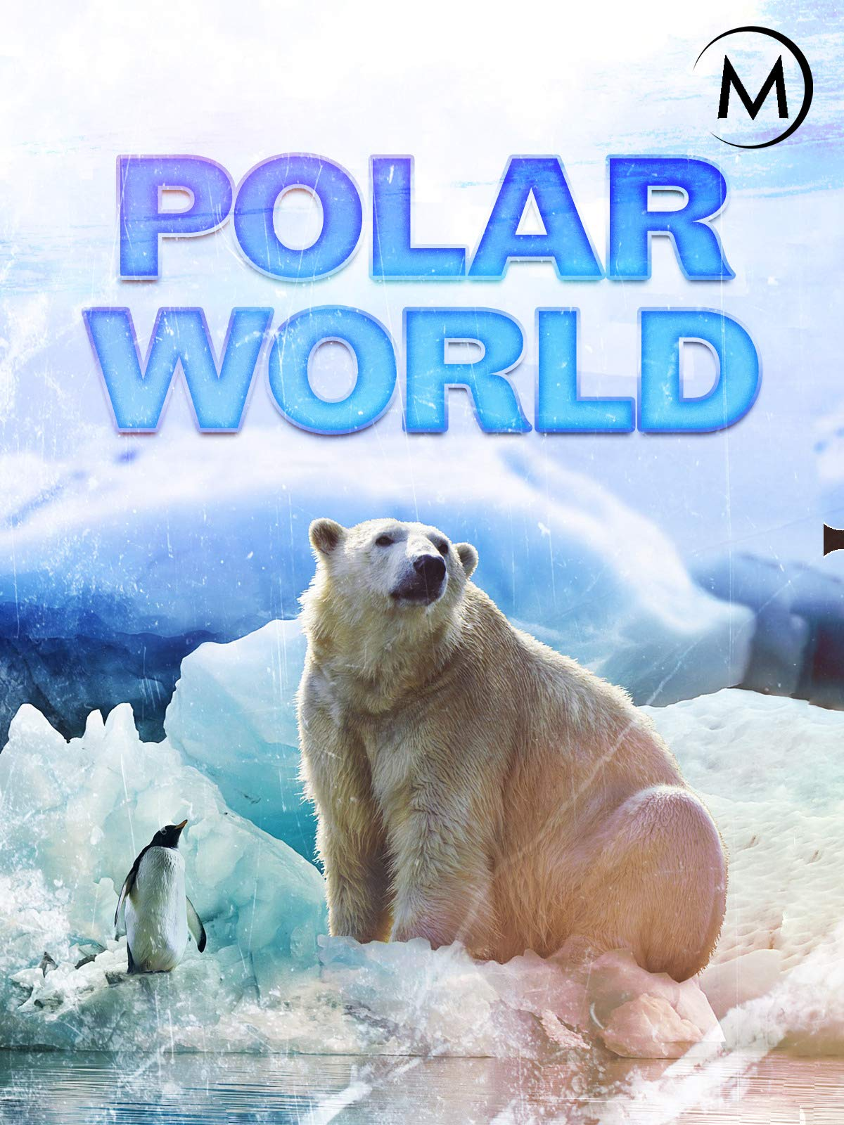 Polar World on Amazon Prime Video UK