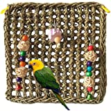 PIVBY Bird Foraging Wall Toy Parrot Chewing Hanging Hook Toys Seagrass Woven Climbing Hammock Mat for Birds Cockatiel African Grey Conure Cage Accessories