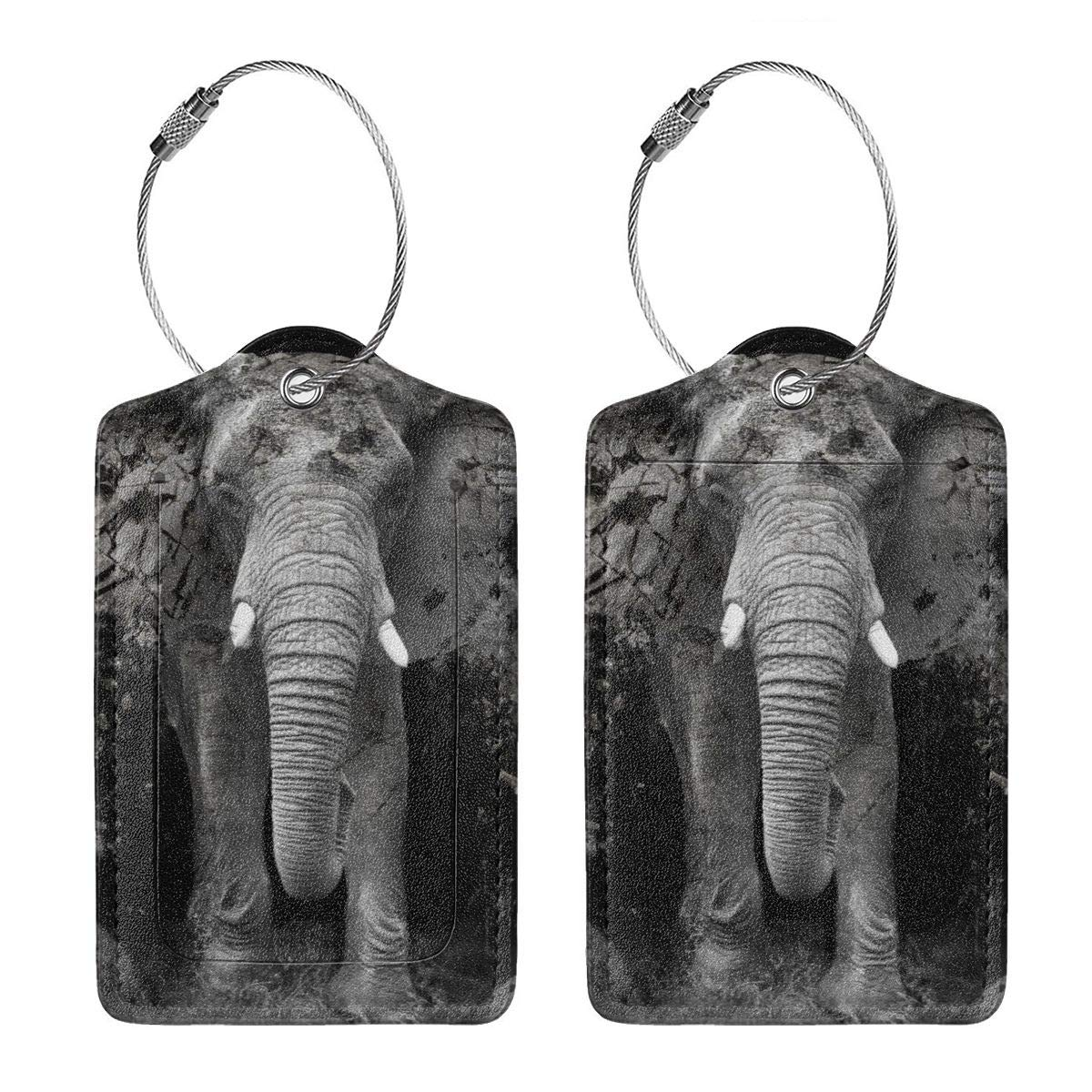 Shattered Elephants Travel Luggage Tags With Full Privacy Cover Leather Case And Stainless Steel Loop