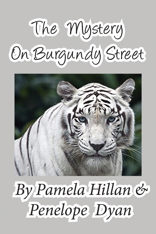 Read Online The Mystery on Burgundy Street pdf epub