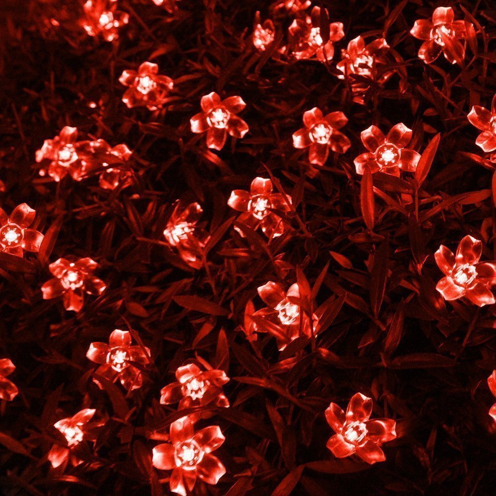 YUJINQ 33ft 100 LEDs 8 Modes Changing Fairy Flower LED String Lights Tail Plug to Extend Party, Wedding, Chirstmas Tree, Garden, Outdoor & Indoor Decoration (Red)