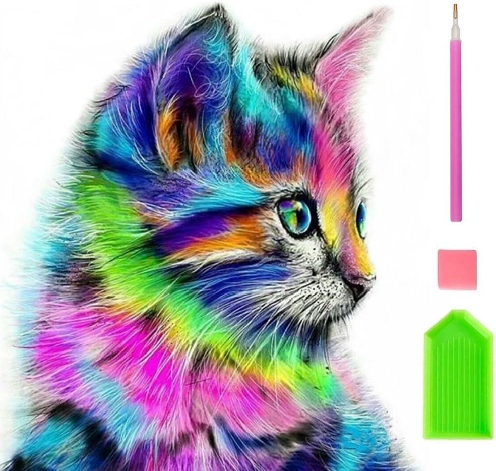5D Pintura por Diamantes. Colorido gato (BGLJ)