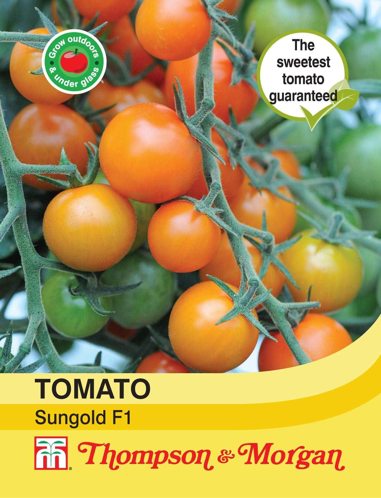 Thompson & Morgan - Vegetables - Tomato Sungold F1 Hybrid - 8 Seed