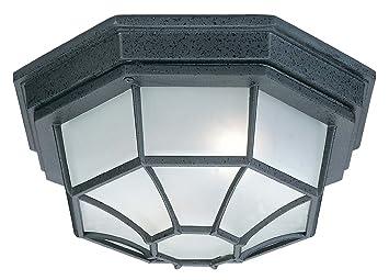 Capital Lighting 9800BK Outdoor Exterior Flush Mount 2 Light, Black Finish