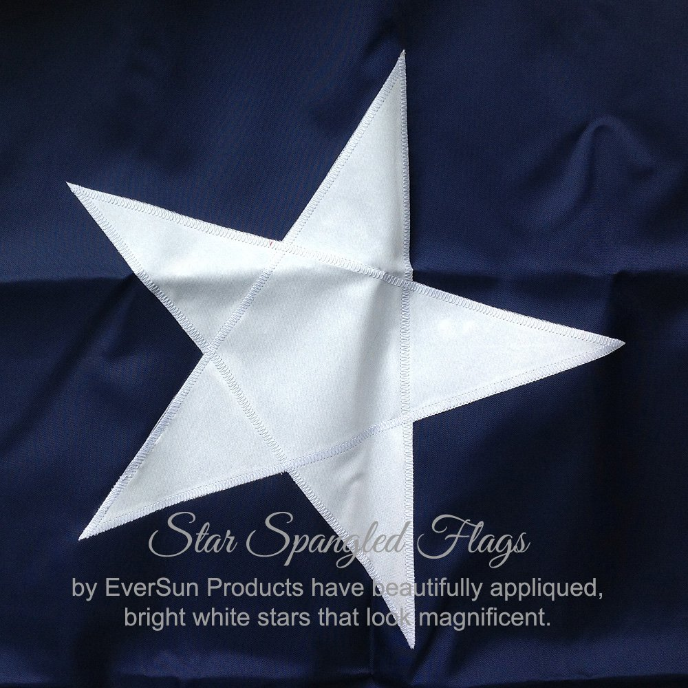 Amazon.com : Texas State Flag 3x5 - 100% Made In USA using Tough ...