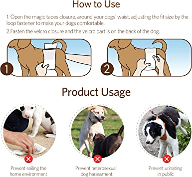 3 Unidades c/ómodos S//M//L//XL Katze Lavables Reutilizables y duraderos para Perros, Pa/ñales de Tatuaje para Perro para Hombre y Mujer