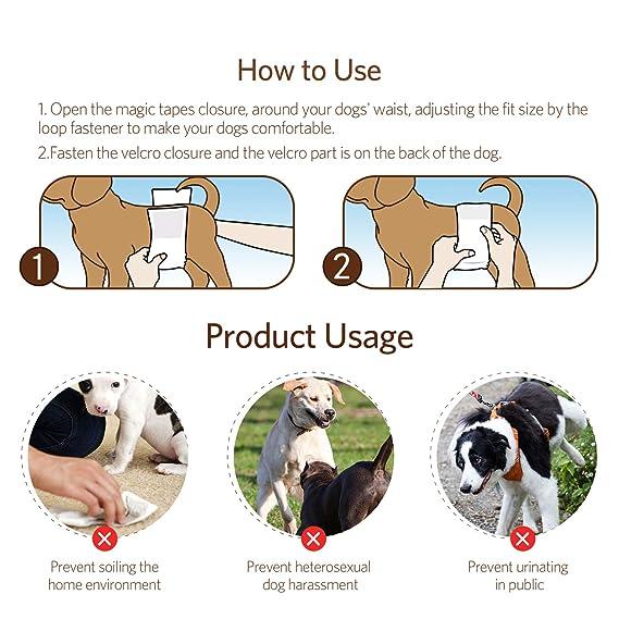 Katze - Pañales de Tatuaje para Perro para Hombre y Mujer, 3 Unidades, Reutilizables y duraderos, cómodos, Lavables, para Perros, (S/M/L/XL): Amazon.es: ...
