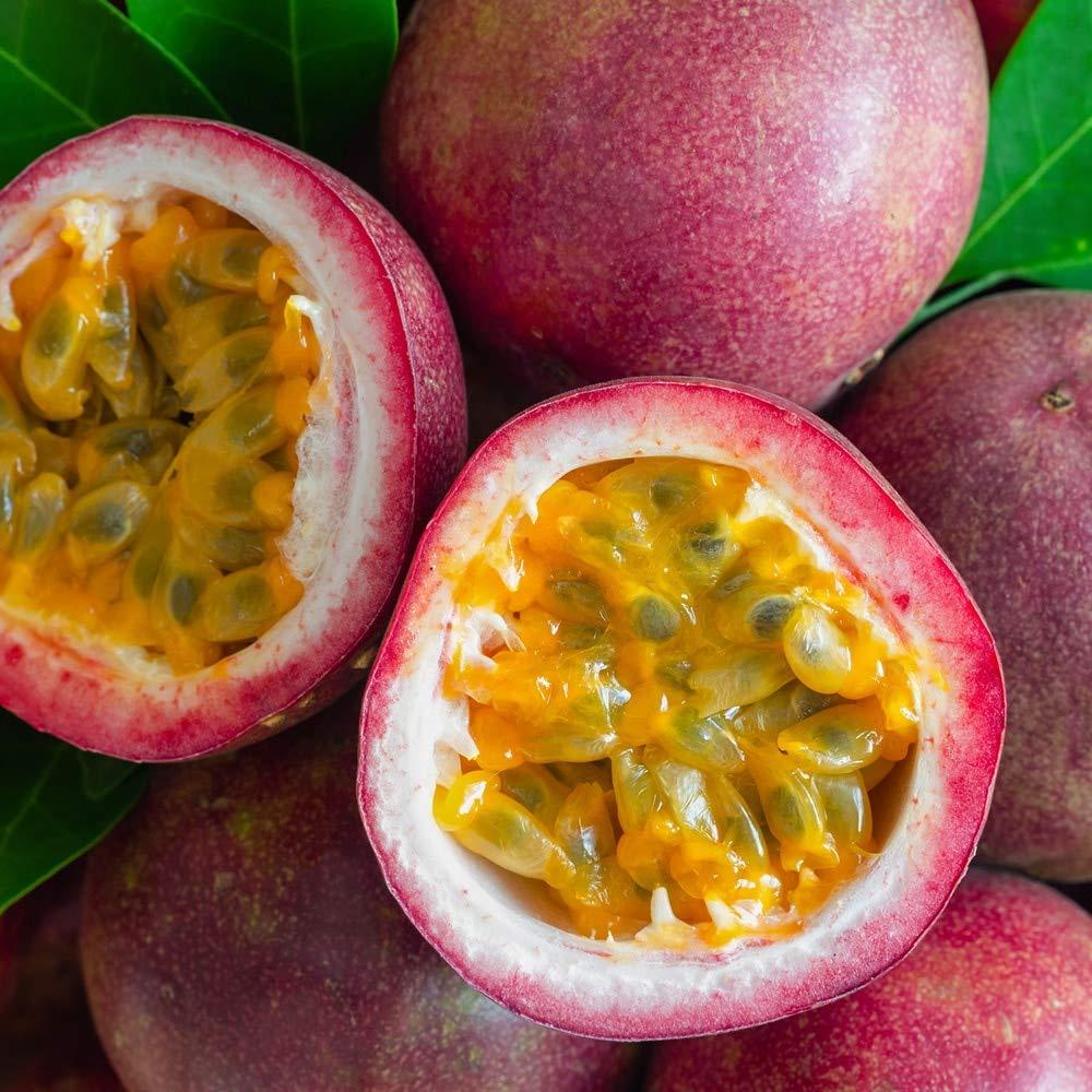 Prozis 100% Real Whey Protein, Suplemento Puro en Polvo con un Perfil Completo de Aminoácidos y Rico en BCAA, Fruta de la pasión - 400 g