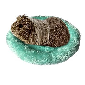 Amazon.com: BWOGUE Hamster Bed,Round Velvet Warm Sleep Mat ...