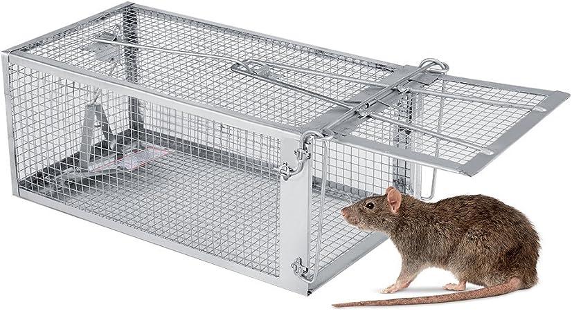 Ratti Trappola Gabbia Filo