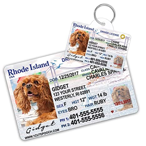 Driver For Cat Pet - Custom Cats Tags com Card Id Dogs Supplies Tag License Dog Amazon And Island Pets Wallet Rhode Personalized
