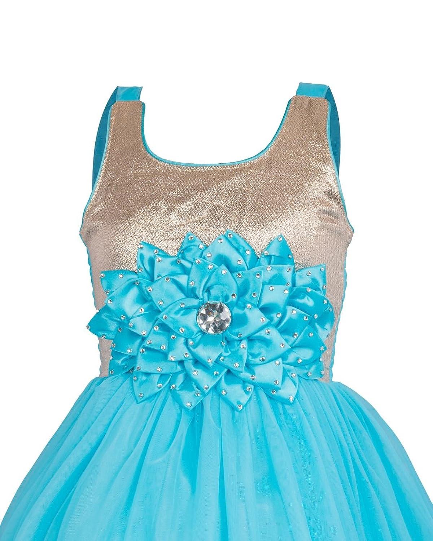 My Lil Princess Baby Girl\'s Net & Satin Birthday Party Dress: Amazon ...